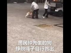 女子保护4岁女孩被斗牛犬咬伤