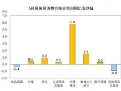 6月CPI同比上涨1.1% 这是什么情况?(图)