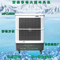 雷豹多功能移动冷风机 工业环保降温制冷空调